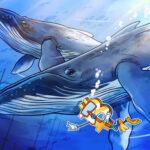 Glassnode: نهنگ ها در این ماه ۱۴۰ هزار بیت کوین برداشت کردند